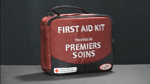 Costco Red Cross First Aid Kit